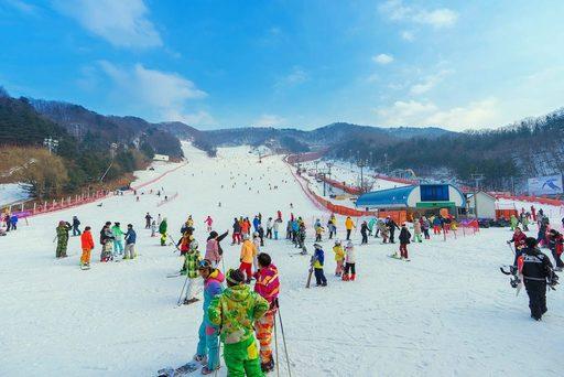 Du lịch Hàn Quốc đến khu trượt tuyếtYangji Pine Ski Resort