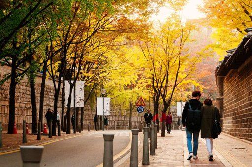 Đường Garosu-gil, Nakseongdae